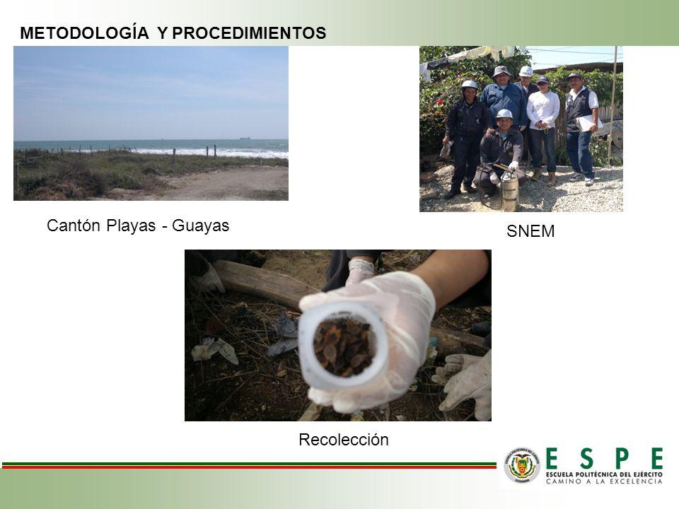 METODOLOGÍA Y PROCEDIMIENTOS Cantón Playas - Guayas SNEM Recolección