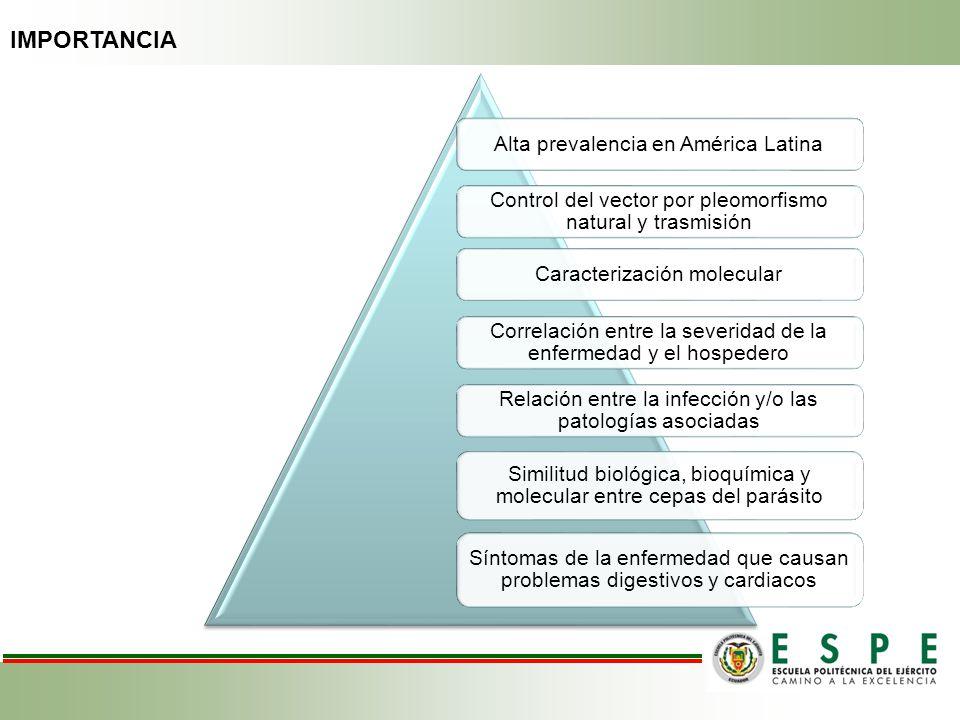 IMPORTANCIA Alta prevalencia en América Latina Control del vector por pleomorfismo natural y trasmisión Caracterización molecular Correlación entre la