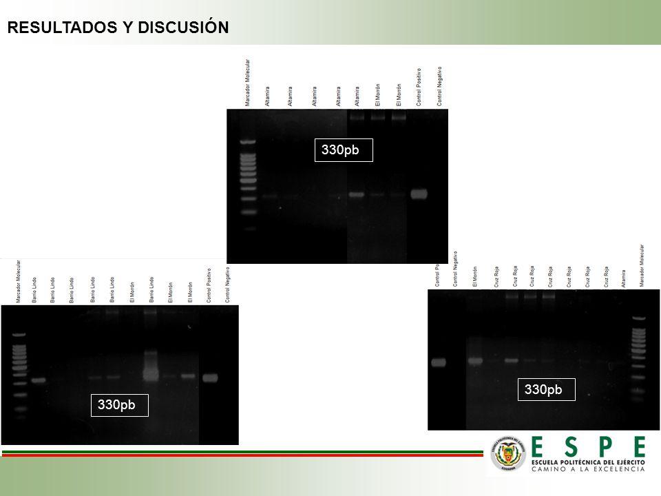 330pb RESULTADOS Y DISCUSIÓN