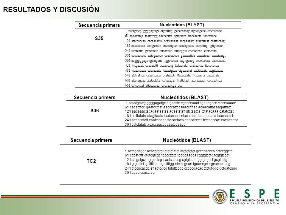 Secuencia primers Nucleótidos (BLAST) S35 1 ataatgtacg ggggagatgc atgatttttg gccccaaaag ttgaacgccc ctcccaaaac 61 aagaatttcg taattttcgg aaccccttta tgtg
