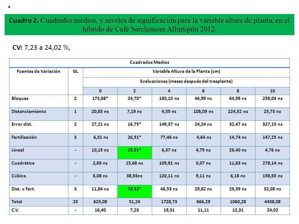 CV: 7,23 a 24,02 %, Cuadro 2. Cuadrados medios, y niveles de significación para la variable altura de planta, en el híbrido de Café Sarchimore Alluriq