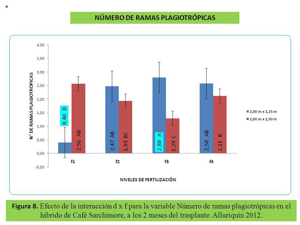 Figura 8. Efecto de la interacción d x f para la variable Número de ramas plagiotrópicas en el híbrido de Café Sarchimore, a los 2 meses del trasplant