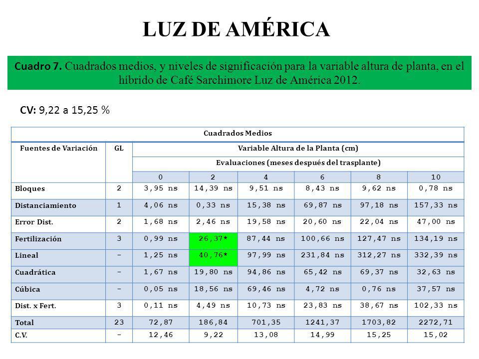 LUZ DE AMÉRICA CV: 9,22 a 15,25 % Cuadro 7. Cuadrados medios, y niveles de significación para la variable altura de planta, en el híbrido de Café Sarc