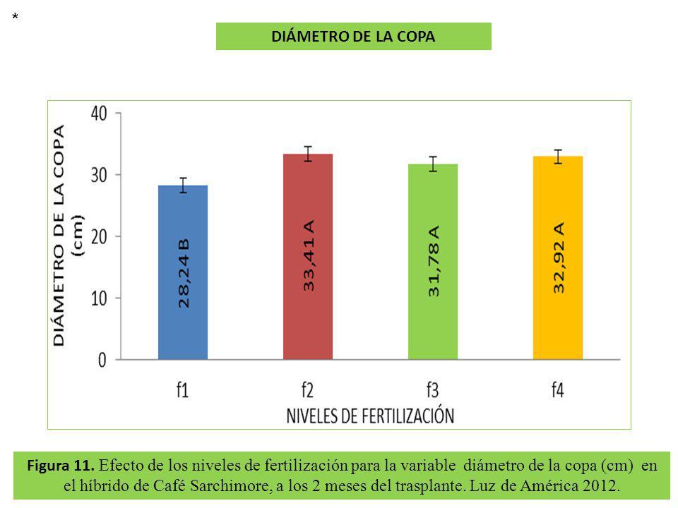 Figura 11. Efecto de los niveles de fertilización para la variable diámetro de la copa (cm) en el híbrido de Café Sarchimore, a los 2 meses del traspl