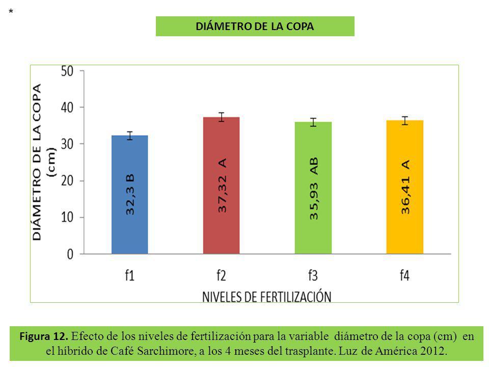 Figura 12. Efecto de los niveles de fertilización para la variable diámetro de la copa (cm) en el híbrido de Café Sarchimore, a los 4 meses del traspl
