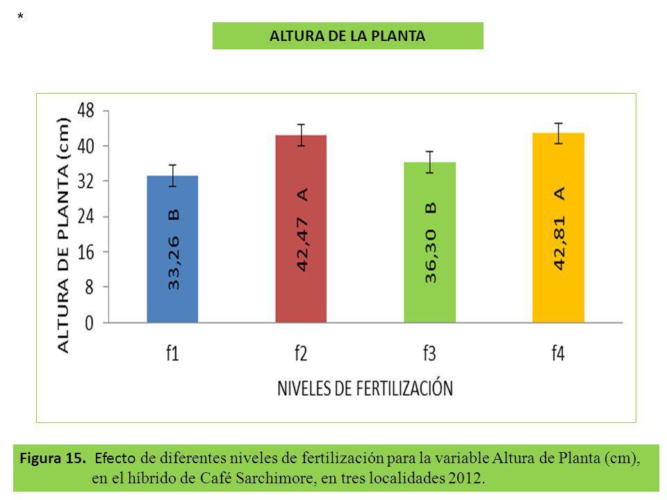 Figura 15. Efecto de diferentes niveles de fertilización para la variable Altura de Planta (cm), en el híbrido de Café Sarchimore, en tres localidades