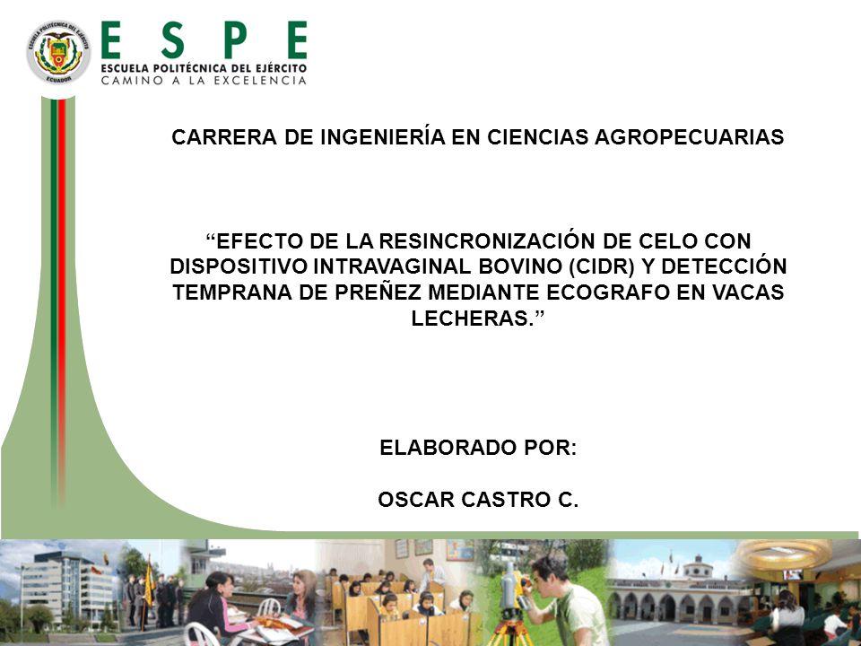 CARRERA DE INGENIERÍA EN CIENCIAS AGROPECUARIAS EFECTO DE LA RESINCRONIZACIÓN DE CELO CON DISPOSITIVO INTRAVAGINAL BOVINO (CIDR) Y DETECCIÓN TEMPRANA