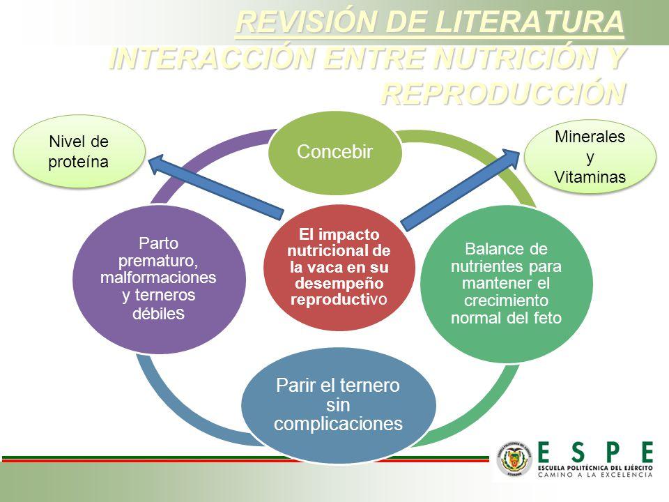 REVISIÓN DE LITERATURA INTERACCIÓN ENTRE NUTRICIÓN Y REPRODUCCIÓN El impacto nutricional de la vaca en su desempeño reproductivo Concebir Balance de n