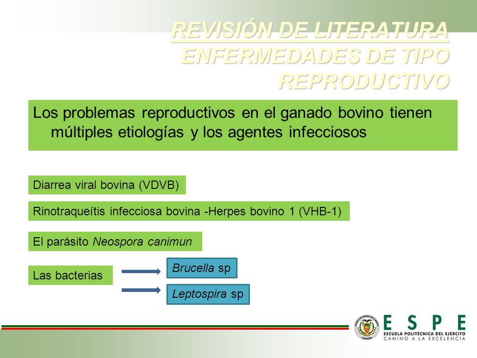 REVISIÓN DE LITERATURA ENFERMEDADES DE TIPO REPRODUCTIVO Los problemas reproductivos en el ganado bovino tienen múltiples etiologías y los agentes inf