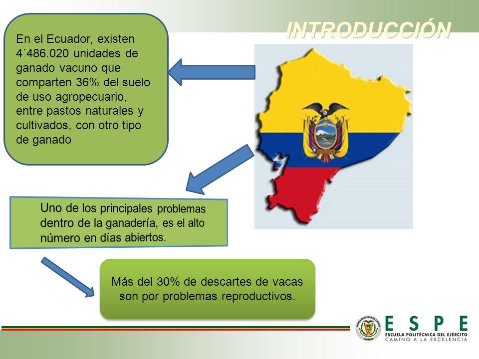 INTRODUCCIÓN INTRODUCCIÓN En el Ecuador, existen 4´486.020 unidades de ganado vacuno que comparten 36% del suelo de uso agropecuario, entre pastos nat