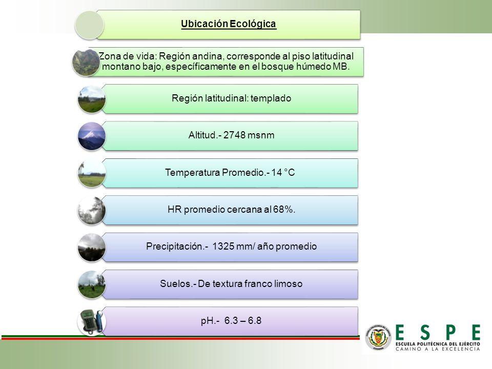 Ubicación Ecológica Zona de vida: Región andina, corresponde al piso latitudinal montano bajo, específicamente en el bosque húmedo MB. Región latitudi