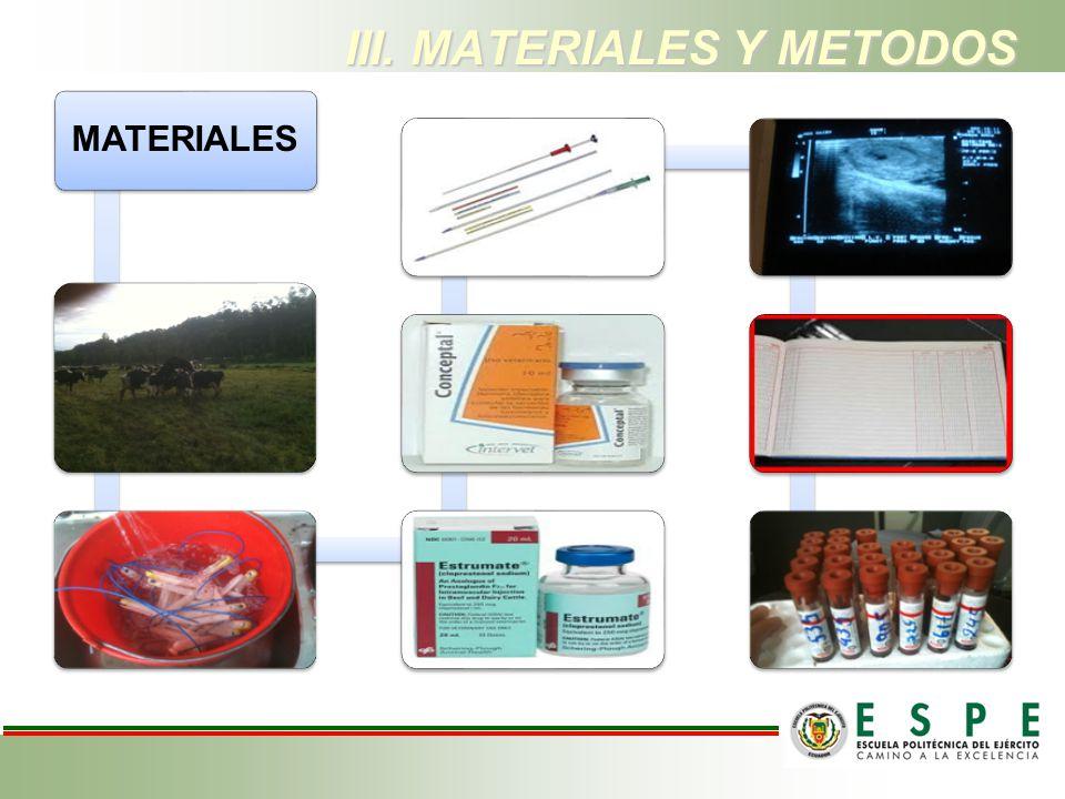MATERIALES III. MATERIALES Y METODOS
