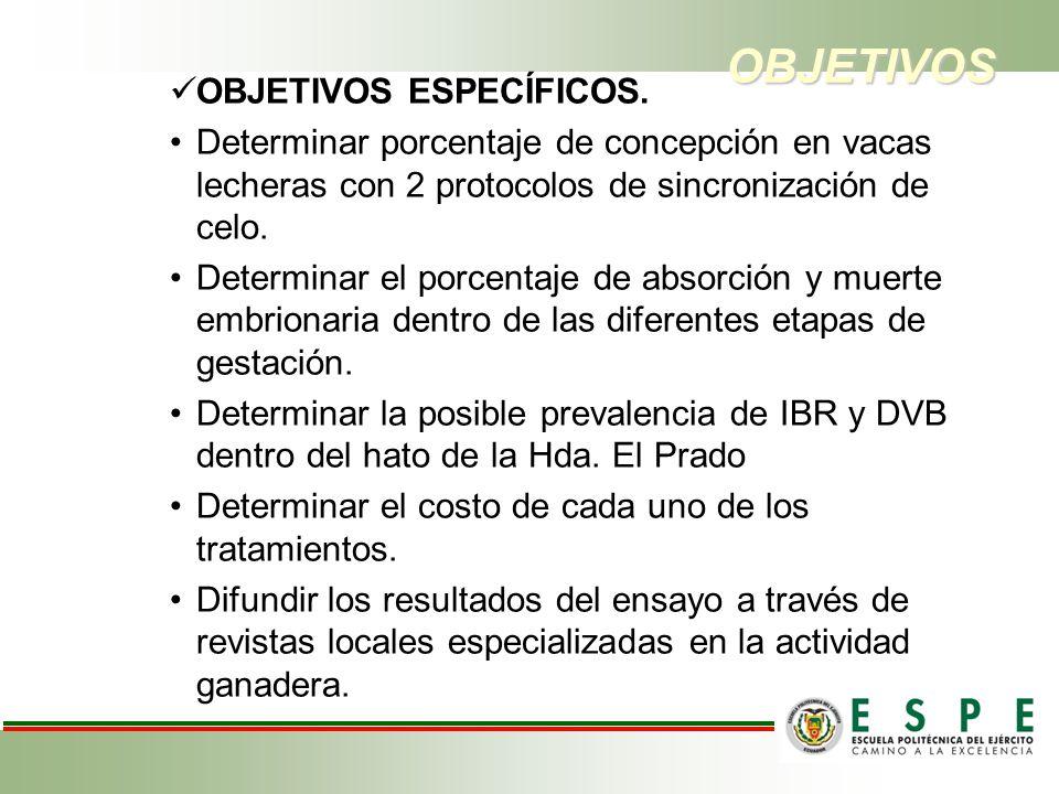V.CONCLUSIONES.