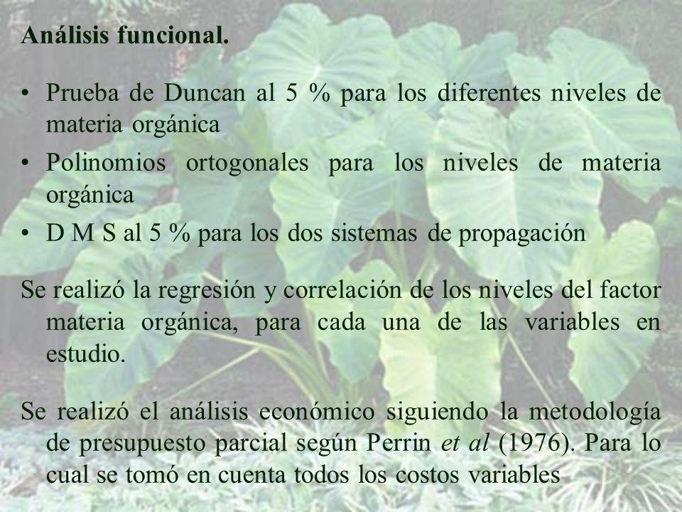 Análisis funcional.