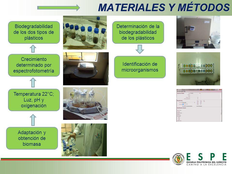 MATERIALES Y MÉTODOS Adaptación y obtención de biomasa Temperatura 22°C; Luz, pH y oxigenación Crecimiento determinado por espectrofotometría Biodegradabilidad de los dos tipos de plásticos Determinación de la biodegradabilidad de los plásticos Identificación de microorganismos