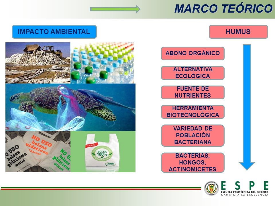MARCO TEÓRICO IMPACTO AMBIENTALHUMUS ABONO ORGÁNICO ALTERNATIVA ECOLÓGICA FUENTE DE NUTRIENTES HERRAMIENTA BIOTECNOLÓGICA VARIEDAD DE POBLACIÓN BACTERIANA BACTERIAS, HONGOS, ACTINOMICETES