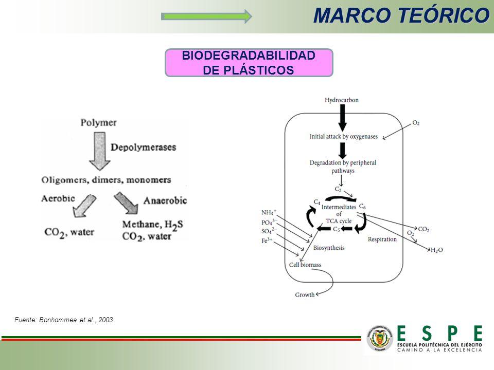 MARCO TEÓRICO BIODEGRADABILIDAD DE PLÁSTICOS Fuente: Bonhommea et al., 2003