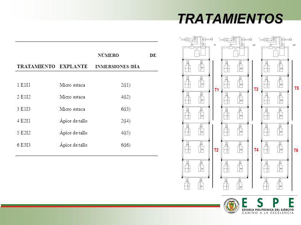 TRATAMIENTOS TRATAMIENTOEXPLANTE NÚMERO DE INMERSIONES /DÍA 1 E1I1Micro estaca2(i1) 2 E1I2Micro estaca4(i2) 3 E1I3Micro estaca6(i3) 4 E2I1Ápice de tallo2(i4) 5 E2I2Ápice de tallo4(i5) 6 E3I3Ápice de tallo6(i6)