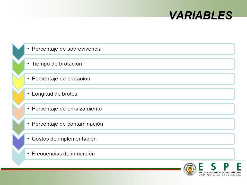 VARIABLES Porcentaje de sobrevivenciaTiempo de brotaciónPorcentaje de brotaciónLongitud de brotesPorcentaje de enraizamientoPorcentaje de contaminaciónCostos de implementaciónFrecuencias de inmersión