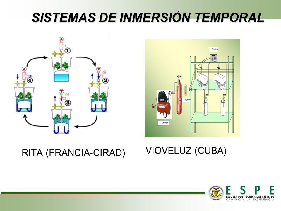 SISTEMAS DE INMERSIÓN TEMPORAL VIOVELUZ (CUBA) RITA (FRANCIA-CIRAD)