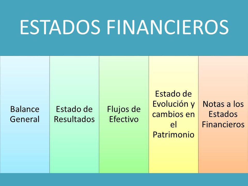 ESTADOS FINANCIEROS Balance General Estado de Resultados Flujos de Efectivo Estado de Evolución y cambios en el Patrimonio Notas a los Estados Financi
