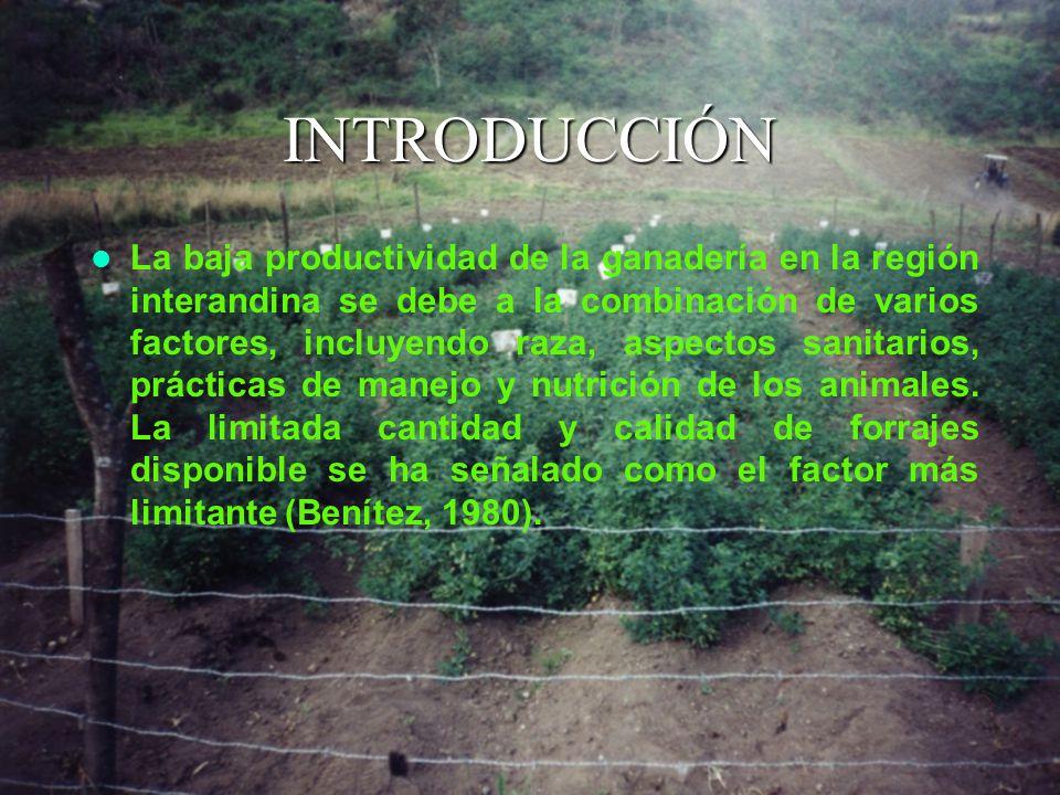 INTRODUCCIÓN La baja productividad de la ganadería en la región interandina se debe a la combinación de varios factores, incluyendo raza, aspectos sanitarios, prácticas de manejo y nutrición de los animales.