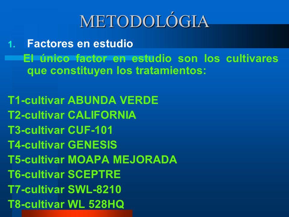 MATERIALES Para producción de forraje: Semillas comerciales de alfalfa (CUF-101, SWL- 8210, MOAPA MEJORADA, WL 528HQ, SCEPTRE, ABUNDA VERDE, GENESIS,