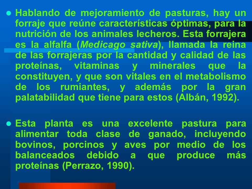 MATERIALES Para producción de forraje: Semillas comerciales de alfalfa (CUF-101, SWL- 8210, MOAPA MEJORADA, WL 528HQ, SCEPTRE, ABUNDA VERDE, GENESIS, CALIFORNIA) Cal Fertilizantes: 0-46-0, Urea, SUL-PO-MAG Varios