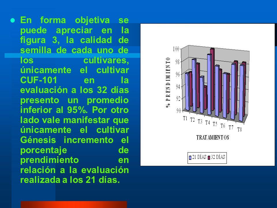 CUADRO 9 Promedios del porcentaje de prendimiento de ocho cultivares de alfalfa. Prueba de Duncan al 5% TRATAMIENTOS (CULTIVARES) PORCENTAJE DE PRENDI
