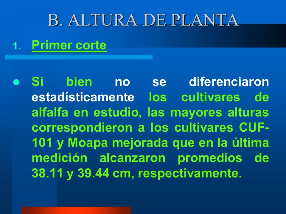 En forma objetiva se puede apreciar en la figura 3, la calidad de semilla de cada uno de los cultivares, únicamente el cultivar CUF-101 en la evaluaci