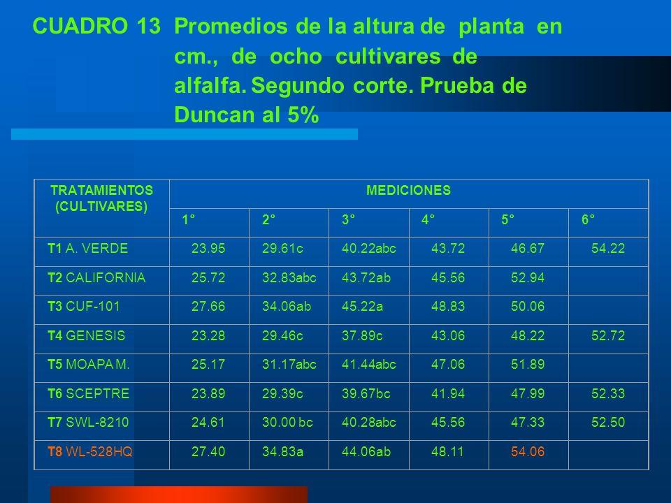 CUADRO 12 Análisis de variancia de la altura de planta en cm. de ocho cultivares de alfalfa, segundo corte. IASA, Rumiñahui, Pichincha 2005. FUENTES D