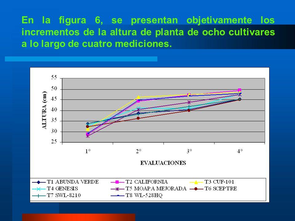 3. Tercer corte Los tratamientos se diferenciaron a nivel del 1% en cada una de las tres primeras mediciones, mientras que en la cuarta y última no se
