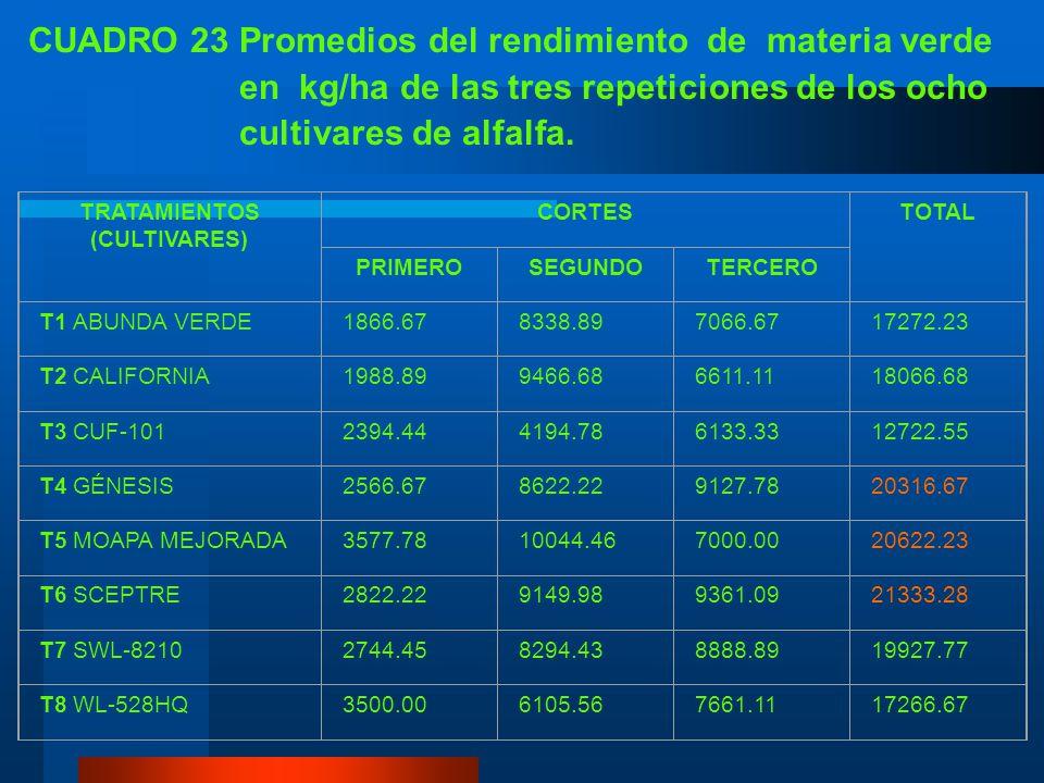 CUADRO 22 Análisis de variancia para el rendimiento de materia verde en kg/ha de ocho cultivares de alfalfa, en cada corte y total. IASA, Rumiñahui, P