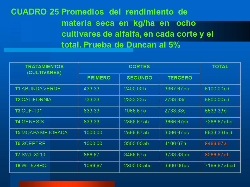 H. RENDIMIENTO DE MATERIA SECA/HA CUADRO 24 Análisis de variancia para el rendimiento de materia seca en kg/ha de ocho cultivares de alfalfa, en cada