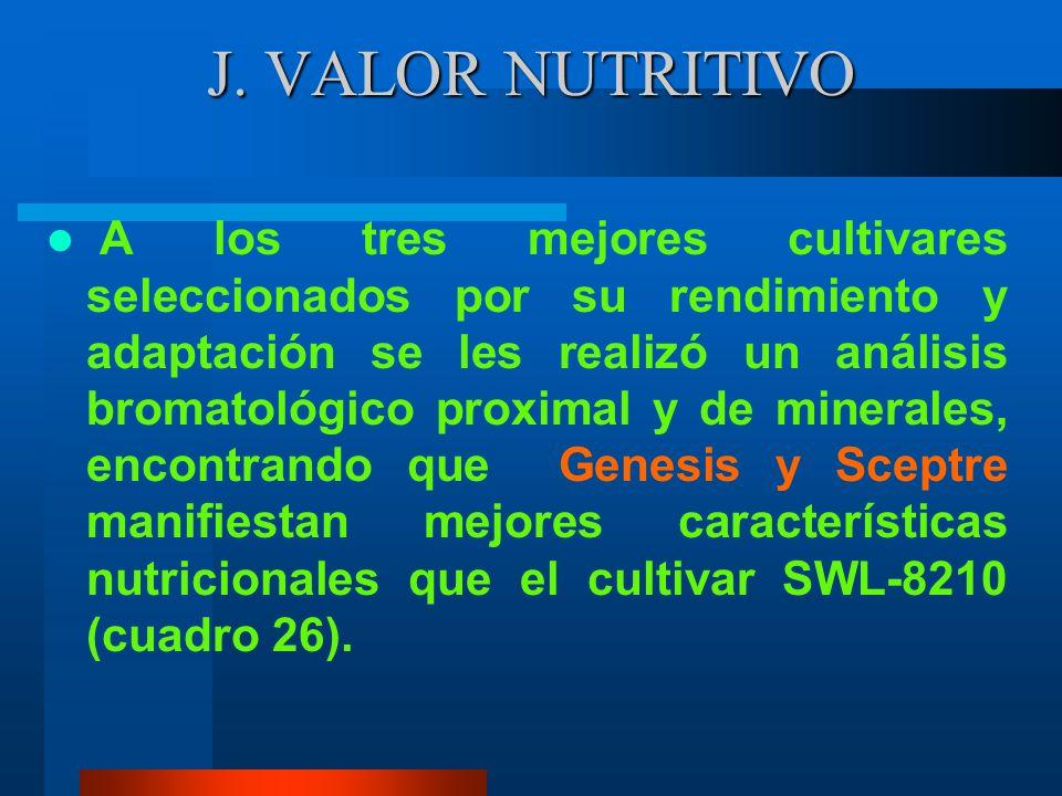 I. ÍNDICE DE NODULACIÓN Y COLOR INTERNO DE LOS NODULOS Todas las variedades de alfalfa utilizadas en el presente estudio presentaban signos de haber s