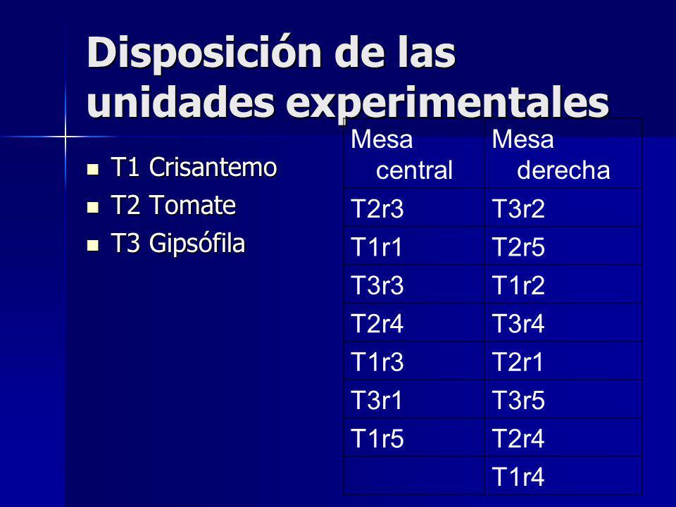 Disposición de las unidades experimentales T1 Crisantemo T1 Crisantemo T2 Tomate T2 Tomate T3 Gipsófila T3 Gipsófila Mesa central Mesa derecha T2r3T3r2 T1r1T2r5 T3r3T1r2 T2r4T3r4 T1r3T2r1 T3r1T3r5 T1r5T2r4 T1r4