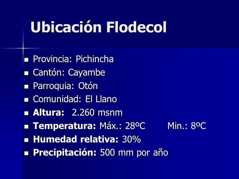 Ubicación Flodecol Provincia: Pichincha Provincia: Pichincha Cantón: Cayambe Cantón: Cayambe Parroquia: Otón Parroquia: Otón Comunidad: El Llano Comunidad: El Llano Altura:2.260 msnm Altura:2.260 msnm Temperatura: Máx.: 28ºCMin.: 8ºC Temperatura: Máx.: 28ºCMin.: 8ºC Humedad relativa: 30% Humedad relativa: 30% Precipitación: 500 mm por año Precipitación: 500 mm por año