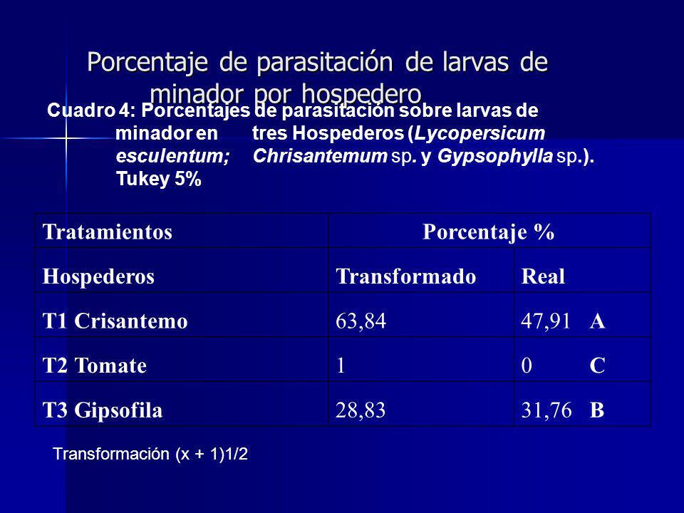 Porcentaje de parasitación de larvas de minador por hospedero TratamientosPorcentaje % HospederosTransformadoReal T1 Crisantemo63,8447,91 A T2 Tomate10 C T3 Gipsofila28,8331,76 B Cuadro 4: Porcentajes de parasitación sobre larvas de minador en tres Hospederos (Lycopersicum esculentum; Chrisantemum sp.