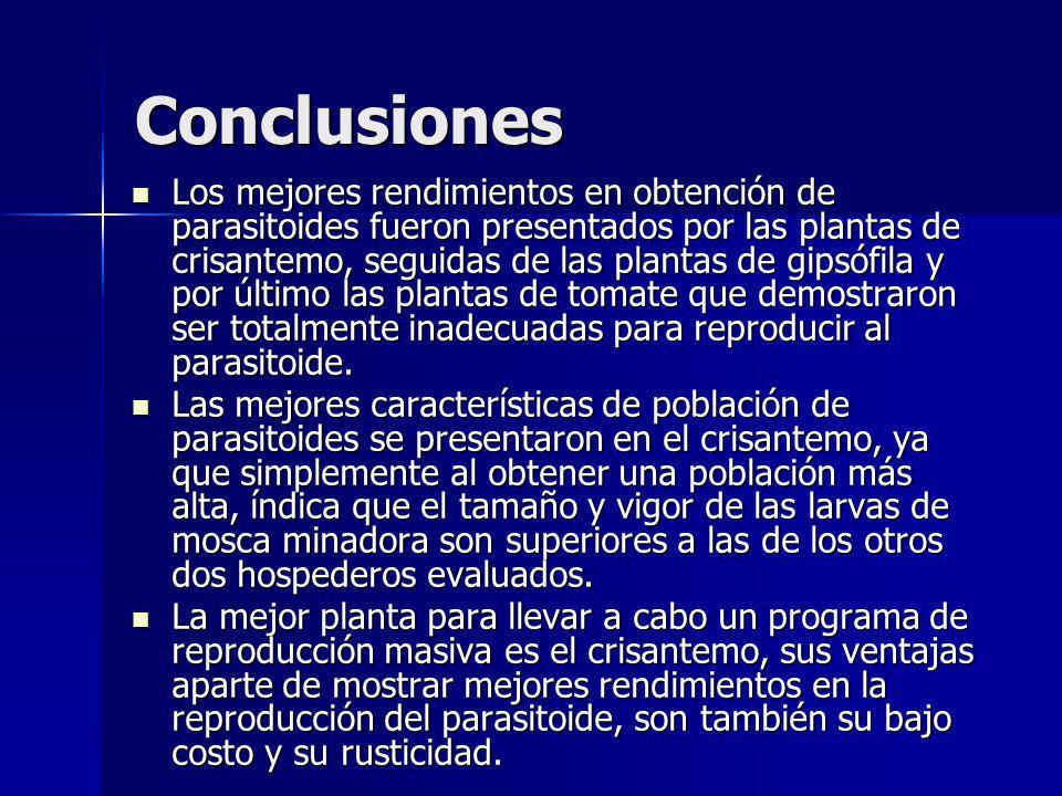 Conclusiones Los mejores rendimientos en obtención de parasitoides fueron presentados por las plantas de crisantemo, seguidas de las plantas de gipsóf