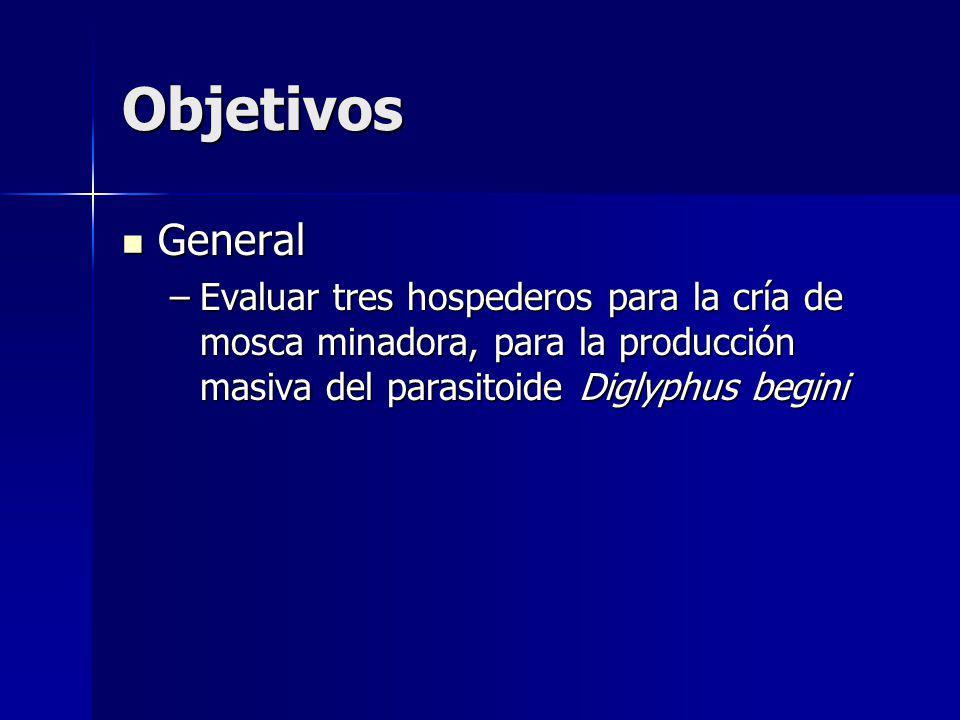 Objetivos General General –Evaluar tres hospederos para la cría de mosca minadora, para la producción masiva del parasitoide Diglyphus begini