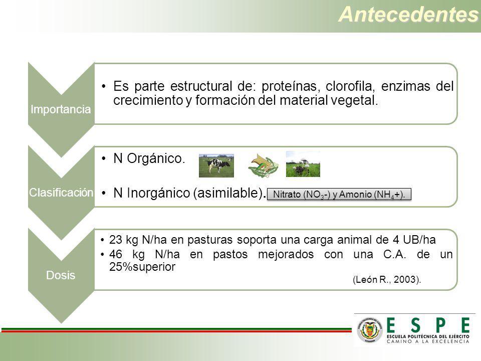 Antecedentes Importancia Es parte estructural de: proteínas, clorofila, enzimas del crecimiento y formación del material vegetal. Clasificación N Orgá