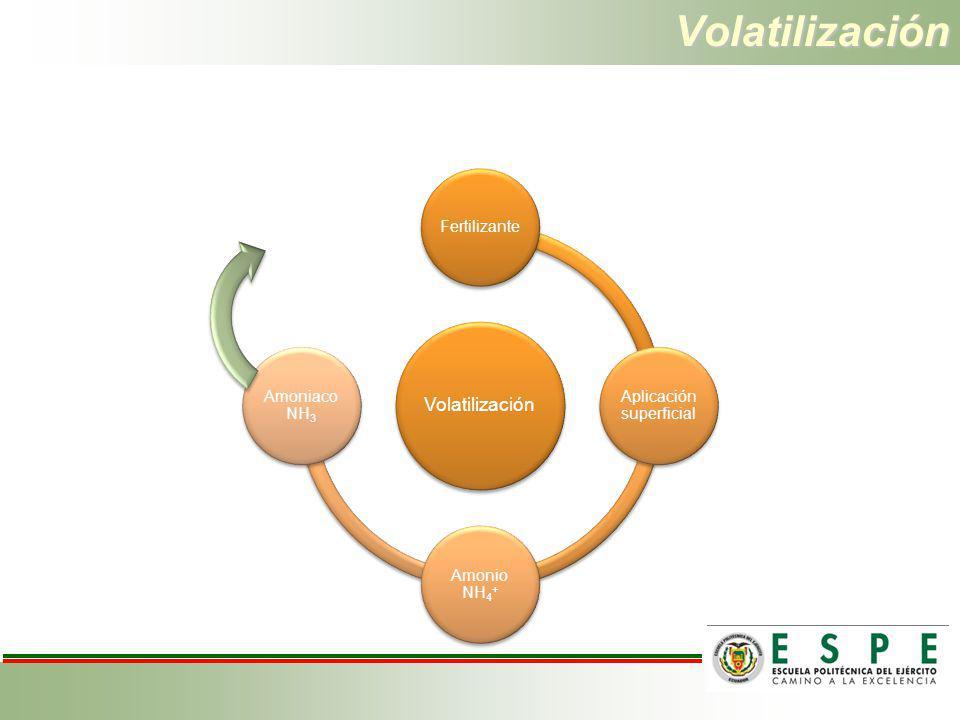 Volatilización Volatilización Fertilizante Aplicación superficial Amonio NH4 + Amoniaco NH3