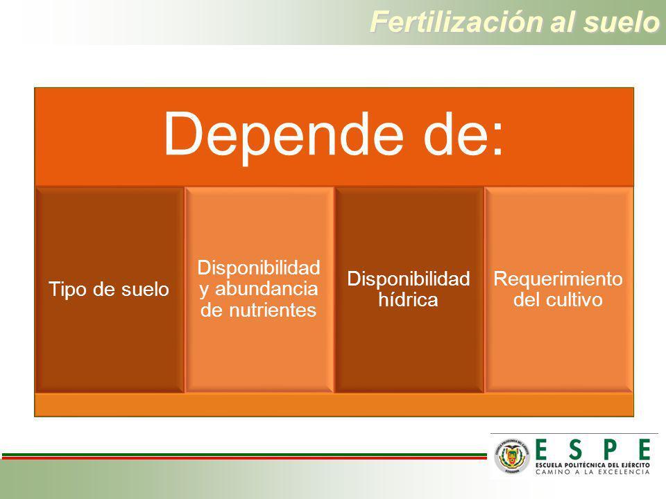 Fertilización al suelo Depende de: Tipo de suelo Disponibilidad y abundancia de nutrientes Disponibilidad hídrica Requerimiento del cultivo