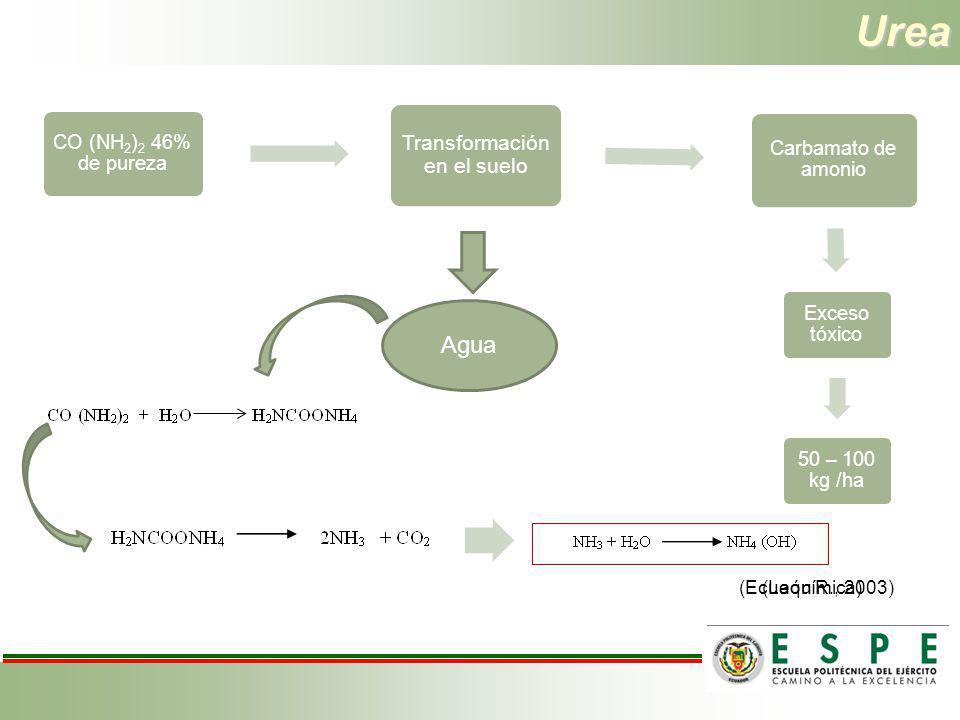 Urea CO (NH2)2 46% de pureza Transformación en el suelo Carbamato de amonio Exceso tóxico 50 – 100 kg /ha Transformación en el suelo Agua (León R., 20