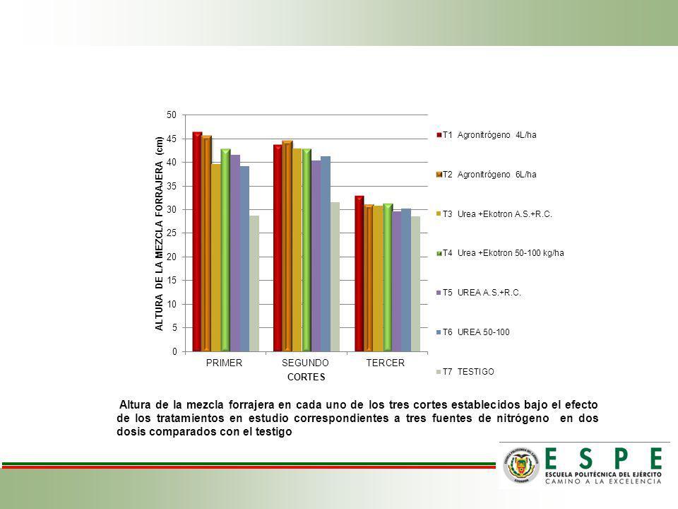 Altura de la mezcla forrajera en cada uno de los tres cortes establecidos bajo el efecto de los tratamientos en estudio correspondientes a tres fuente