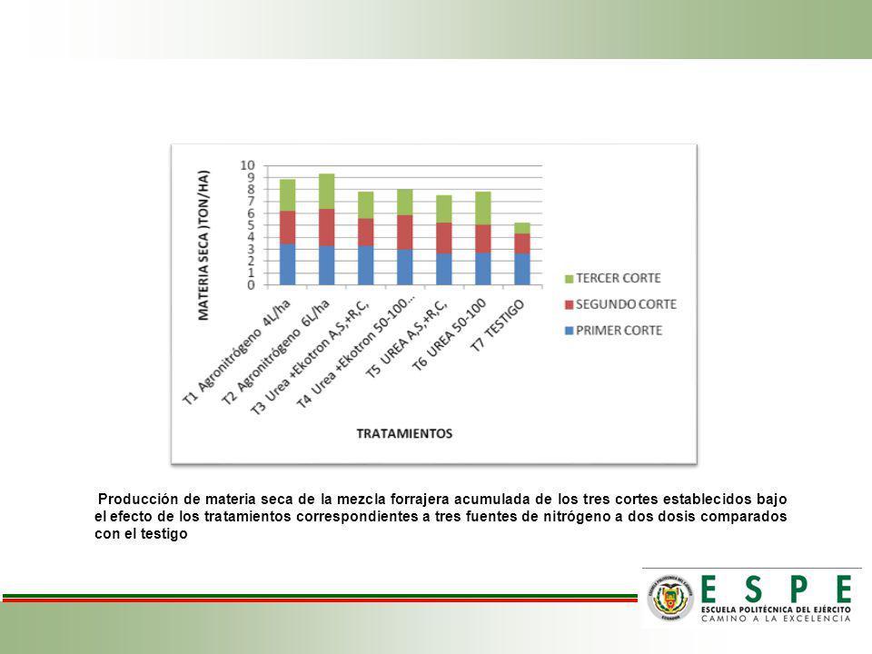 Producción de materia seca de la mezcla forrajera acumulada de los tres cortes establecidos bajo el efecto de los tratamientos correspondientes a tres
