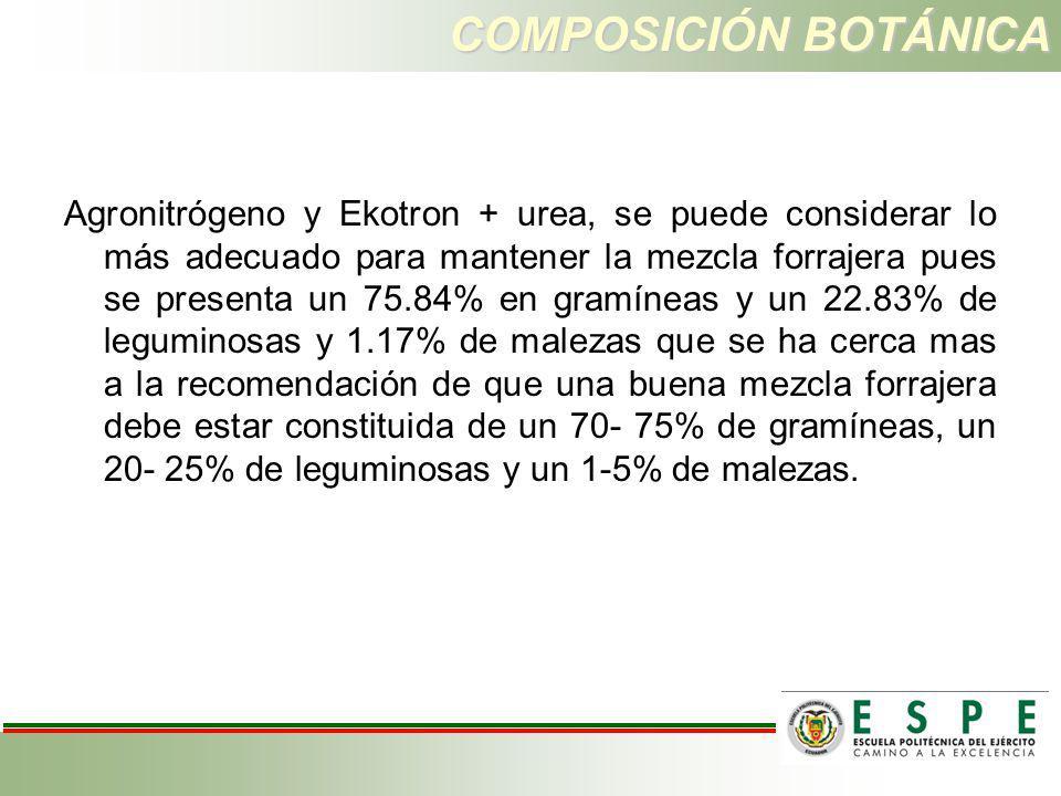 COMPOSICIÓN BOTÁNICA Agronitrógeno y Ekotron + urea, se puede considerar lo más adecuado para mantener la mezcla forrajera pues se presenta un 75.84%