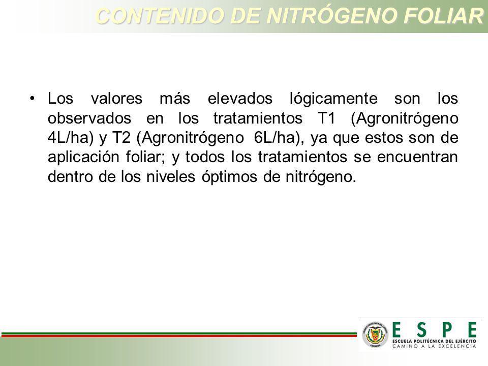 CONTENIDO DE NITRÓGENO FOLIAR Los valores más elevados lógicamente son los observados en los tratamientos T1 (Agronitrógeno 4L/ha) y T2 (Agronitrógeno
