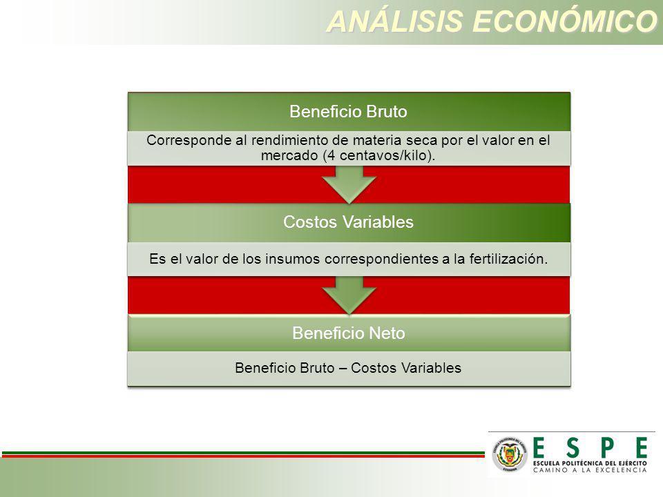 ANÁLISIS ECONÓMICO Beneficio Neto Beneficio Bruto – Costos Variables Costos Variables Es el valor de los insumos correspondientes a la fertilización.