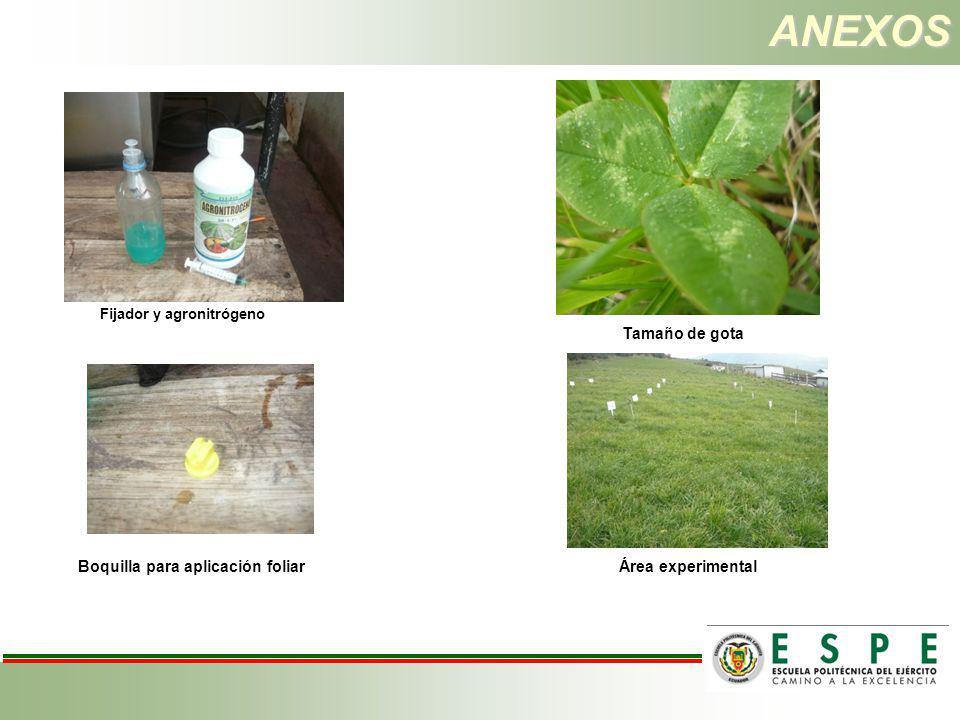 ANEXOS Fijador y agronitrógeno Boquilla para aplicación foliar Área experimental Tamaño de gota